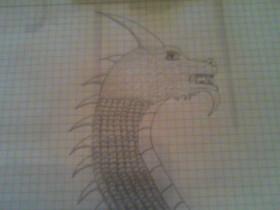 Drachen Zeichnung #1