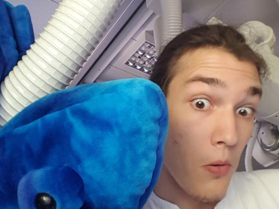 Arbeit + Langeweile + Blaues Chameleon = Das