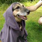 Snoop Dogg oder doch Jedi-Meister?