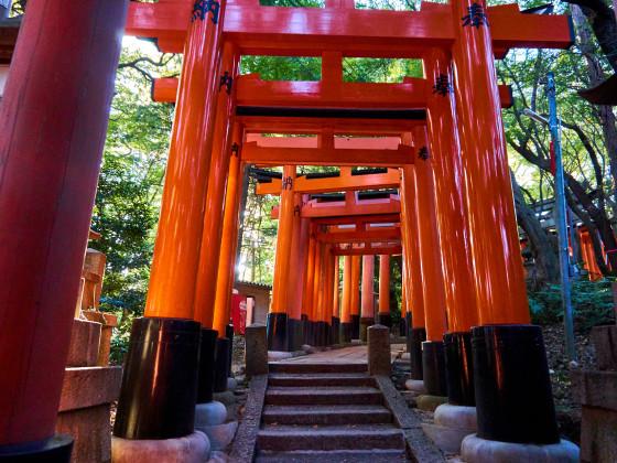 Roten Tore des Fushimi Inari Taisha Schreins