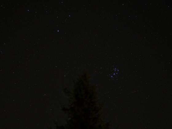 Die Plejaden am Spätsommerlichen Nachthimmel