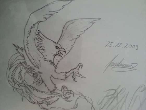 Phönix 25.12.2009 gezeichnet