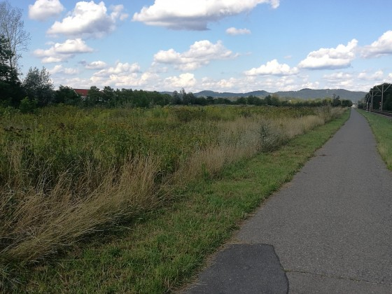 Jogging Route- Beginn der Felder