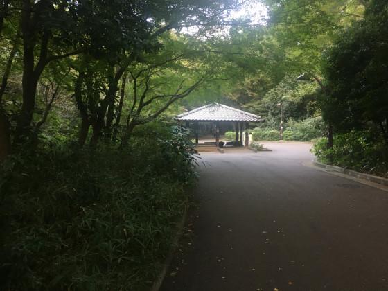 Vogelliebhaber Häuschen im Hikarigaoka Park