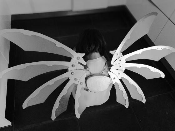 Endlich sind meine Flügel für die Elfia fertig 2.Bild